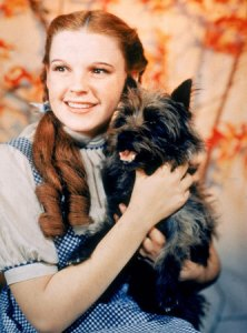 judy-garland-with-toto1